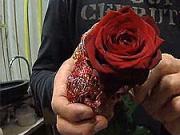 Růže se srdíčkem