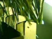 Umělý trávnik - Jak se dělá umělý trávník