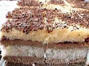 Kokosový krémovník - recept na kakaovo-kokosový koláč