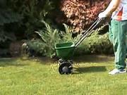 Hnojení  trávniku - jak hnojit záhradní trávnik