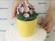 Dort  jako květináč - jak vyrobit dort ve tvaru květináče