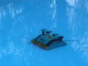Bazénový robot - Čištění bazénu robotem Dolphin 2000