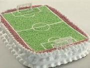 Dort ve tvaru fotbalového hřiště