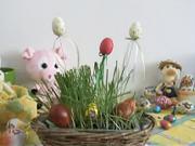 Velikonoční zahrádka - Jak připravit malou velikonoční zahrádku.