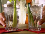 Drink Gin Tonic - míchaný nápoj Gin Tonic - recept