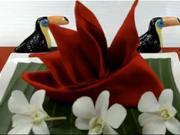 Ubrousek ve tvaru květu - jako poskládat ubrousek do tvaru květu Rajka