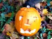 Jak vyřezat dýni na Halloween