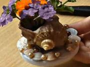 Váza z mušle