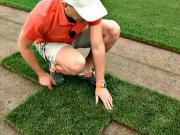 Zakládání trávníku - jak položit travní koberec - péče o travní koberec
