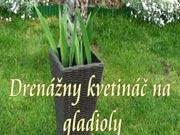 Drenážní květináč na gladioly
