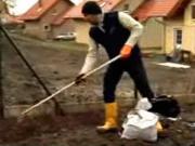 Výsadba živého plotu - jak sázet živý plot / zimostráz