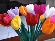 Tulipány z papíru - jak si vyrobit papírové květiny