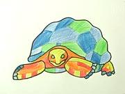 Želva - jak se kreslí želva, jak nakreslit želvu