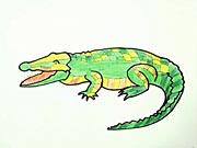 Krokodýl - jak se kreslí krkodýl