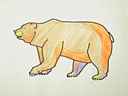Medvěd - jak se kresli medvěd