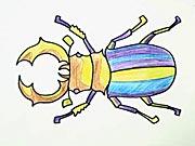 Roháč - jak se kreslí brouk