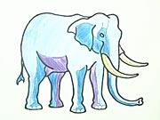 Sloník - jak se kreslí?