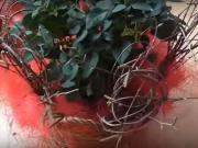Valentýnská ikebana