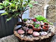 Zahradní dekorace ze skal a kamenů