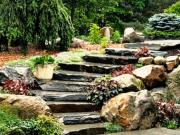 80 zajímavých nápadů do zahrady
