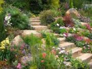 Zahradní návrhy - Nápady do zahrady