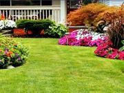 50 zahradních nápadů - jak si navrhnout zahradu
