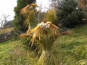 Andělé z trávy