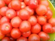 Zavařování rajčat - 3 recepty