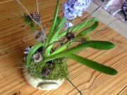 Dekorace s hyacintem