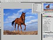 Změna velikosti fotografie - Photoshop